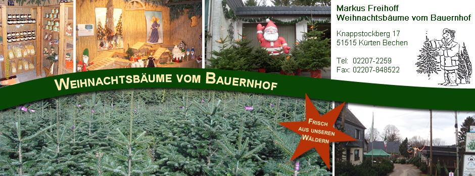 Weihnachtsbäume vom Bauernhof